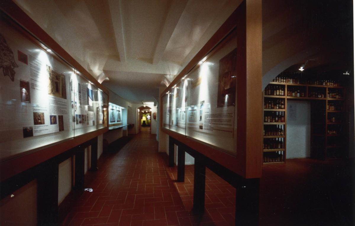 Museo Del Vino